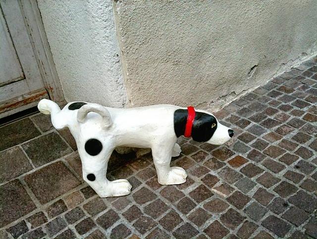 stone-dog-194453_640