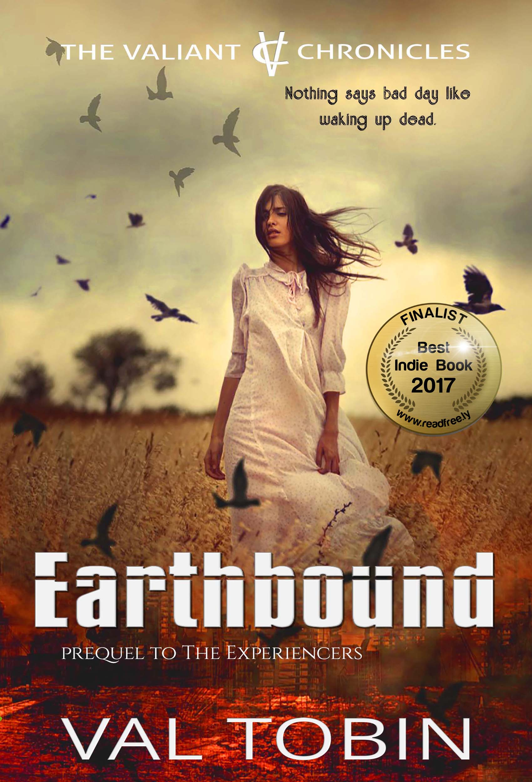 earthbound EBOOK cover award 22nov2017_Final