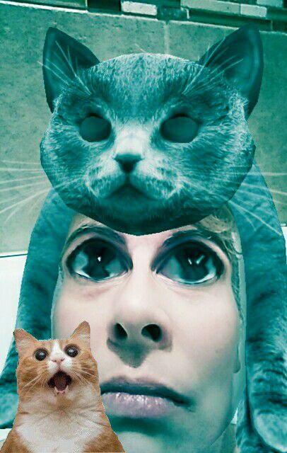 dating nainen rakastaa kissoja